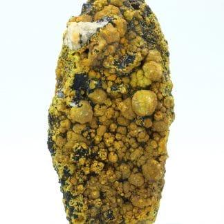 Campylite, Dry Gill, Allerdale, Cumbria, Royaume-Uni.