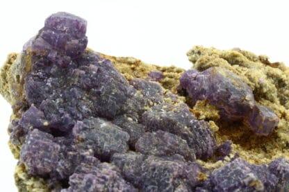 Fluorite violette de Foisches, Givet, Ardennes, Grand Est.
