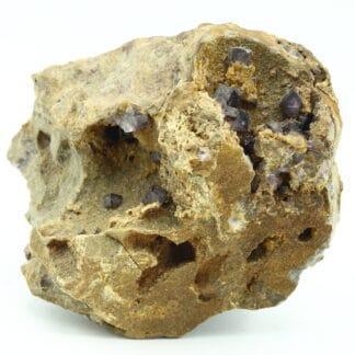 Fluorite dans quartzite, mine de Rancennes, Fromelennes, Ardennes.