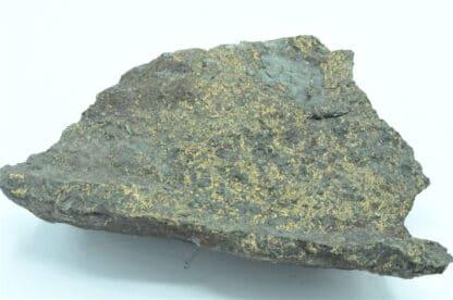 Chalcopyrite et Chlorite, Mine du Charrier, Laprugne, Allier.