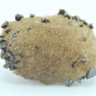 Quartz recouvert de cristaux d'anatase et d'adulaire de la Lauzière