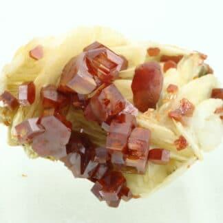 Vanadinite rouge sur baryte crêtée, Mibladen, Maroc.