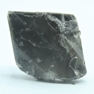 Cristal de baryte Noire et Pyrite, Carrière de Lompret, Belgique.