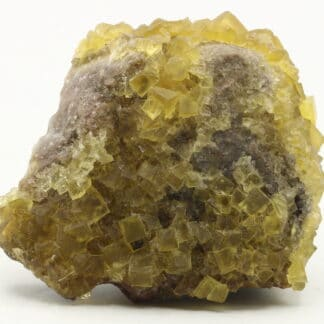 Fluorine jaune, Le Bois Clair, Sologny, Saône-et-Loire.