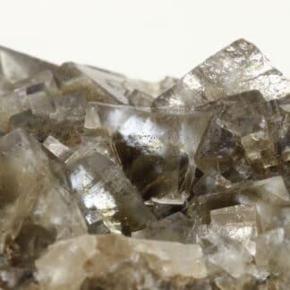 Fluorite bicolore, Durfort, Le Vigan, Gard, Occitanie.