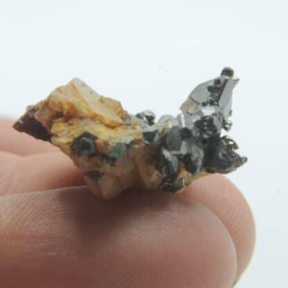 Tétraédrite, Dolomite et Malachite, Mine de Saint-Pierre-de-Mésage, Isère.