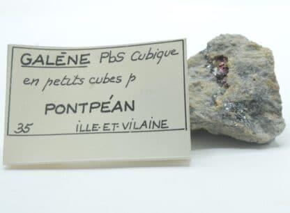 Galène en petits cubes et Pyrite, Pontpéan, Ille-et-Vilaine, Bretagne.