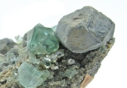 Fluorine maclée et Galène, Mine Heights, Cumberland, Angleterre, Royaume-Uni.