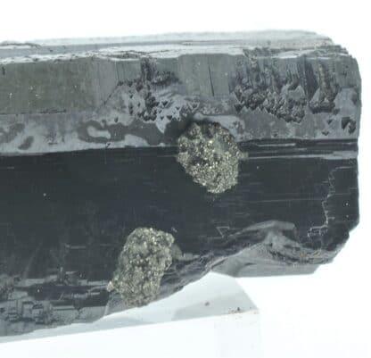 Blende (Sphalérite) maclée et Pyrite, Dalnegorsk, Sibérie, Russie.