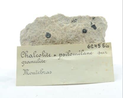 Chalcolite (Torbernite) et Psilomélane sur Granulite, Montebras, Creuse.