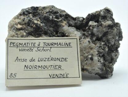 Pegmatite à Tourmaline, Anse de Luzéronde, Noirmoutier, Vendée.