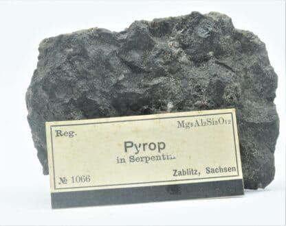 Grenat Pyrope dans une Serpentine, Zablitz, Sachsen (Saxe), Allemagne.