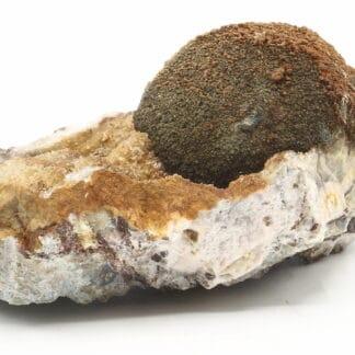Melnikovite, Chalcopyrite, Dolomite, Laguépie, Tarn-et-Garonne.