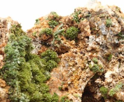 Pyromorphite verte de la mine de Vézis, dans l'Aveyron.