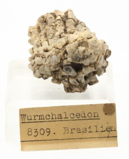 Calcédoine (wurmchalcedon), Brésil, collection Museum Bally-Prior.
