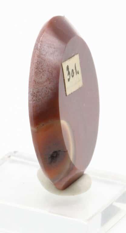 Cornaline polie (carneol geschliffen), collection Museum Bally-Prior.
