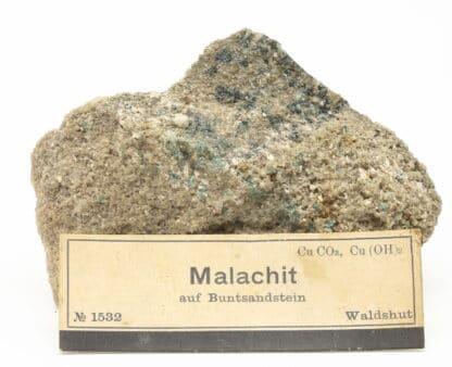 Malachite (malachit auf buntsandstein), Waldshut, Fribourg, Allemagne.