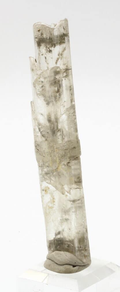 Cristal de gypse, Leforest, région de Douai, Nord.