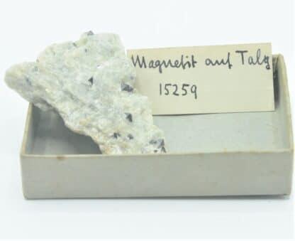 Magnétite automorphe dans du Talc.