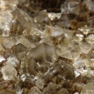 Fluorite bicolore, mine de Durfort, Le Vigan, Gard, Occitanie.