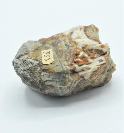 Agate et Opale, Issue des collections du musée Bally en Suisse.