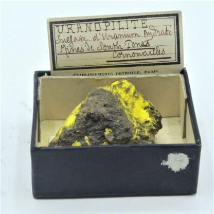 Uranopilite, Mine de South Terras, Cornouailles, Royaume-Uni.