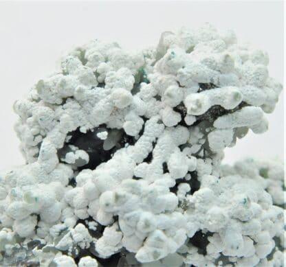 Smithsonite et Hydrozincite, Gisement de M'Fouati, Congo.