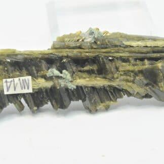Épidote Clinozoïsite, Pakistan.