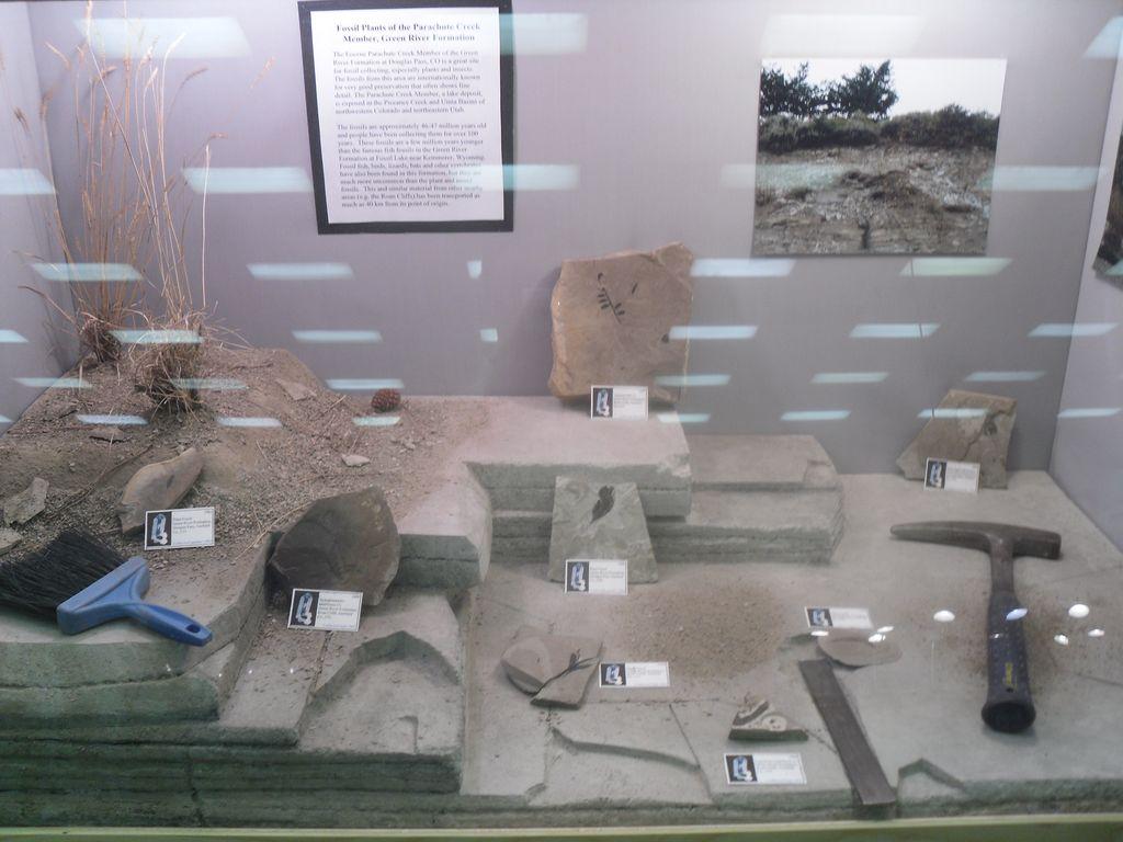 Une maquette reconstituant un site de fouille à fossiles.