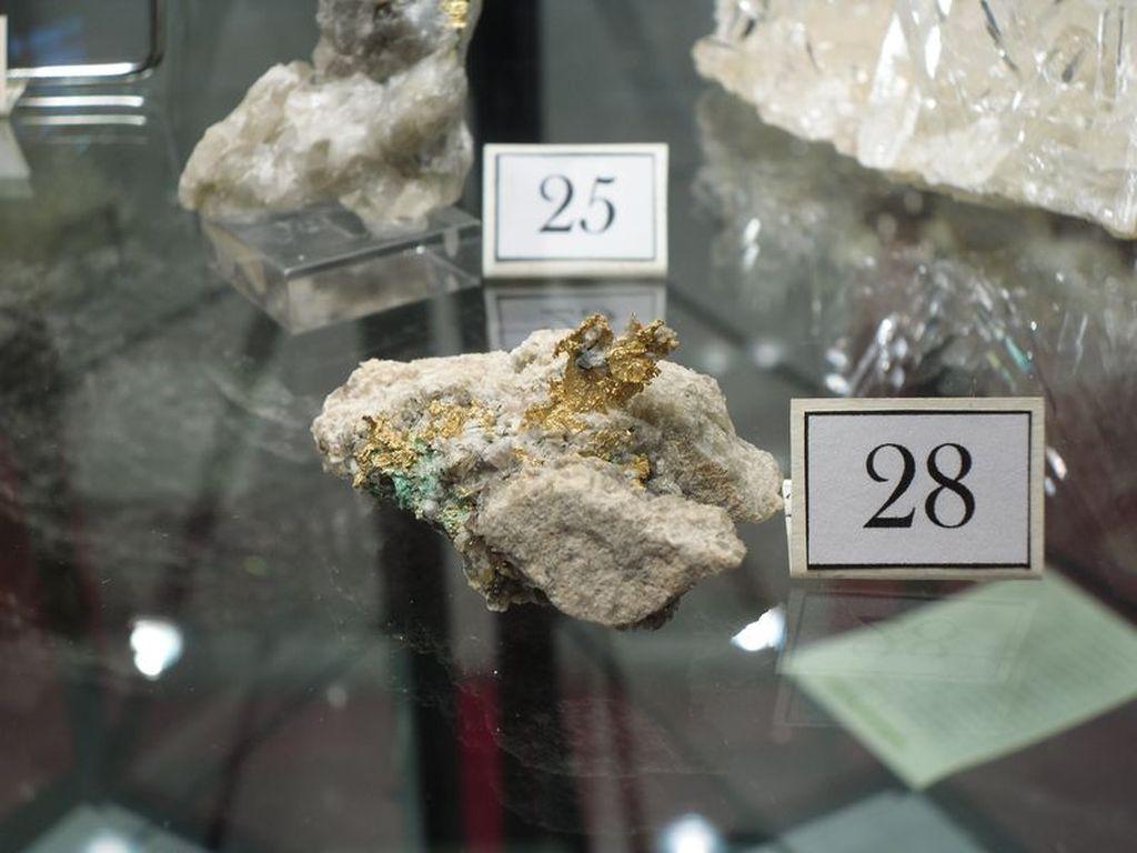 Or sur quartz de La Gardette, une mine en Oisans.